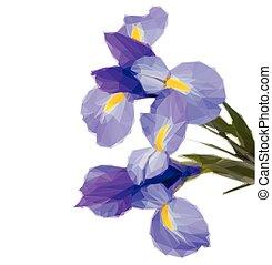 Irises blaue Blumen.