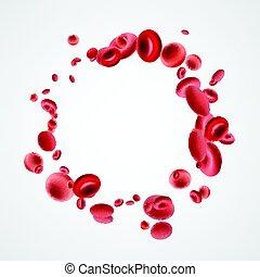 Isolierte rote Blutzellen.