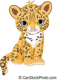 jaguar, junge, reizend