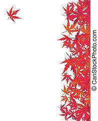 Japanischer roter Ahorn. EPS 8