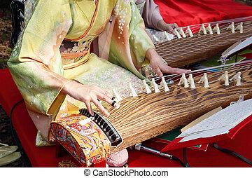 Japanisches traditionelles Instrument