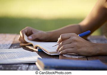 Junge Leute und Bildung, Frauen, die für einen Universitätstest lernen