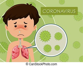 junge, menschliche , ausstellung, coronavirus, diagramm