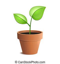 Junggrüne Pflanze in Pot isoliert auf den weißen Hintergründen. Vector