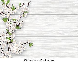 Jungkirschenzweig auf weißem, alten Holzfußboden