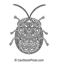 käfer, illustration., färbung, turtle, goldenes, book., vektor, erwachsene, hand-drawn, doodles., anti-stress, buch, children., linear, tortuga