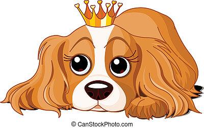 Königlicher Hund
