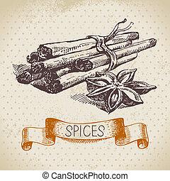 Küchen Kräuter und Gewürze. Vintage Hintergrund mit hand gezeichneter Zeichnung Zimt