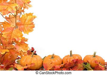 Kürbisse mit Herbstblättern