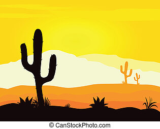 kaktus, mexiko, wüste, sonnenuntergang