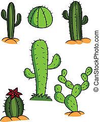 Kaktussammlung