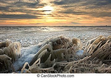 Kalte Wintersonnelandschaft mit Gras bedeckt mit Eis