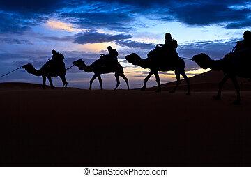 Kamel-Zug sahara-Wüste-Moroko