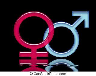 Kampf der Geschlechter