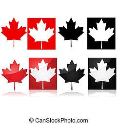 Kanadisches Ahornblatt.