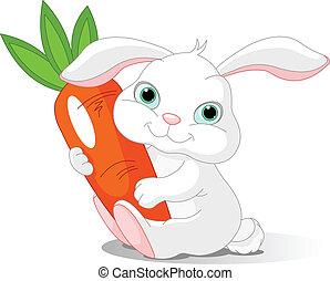 Kaninchen halten riesige Karotten