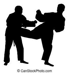 Karate-Kampf