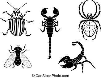 Kartoffelkäfer, Fliege, Skorpion und Spinne