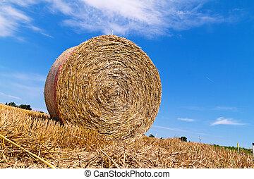 kasten, stroh, ballen, agriculture.