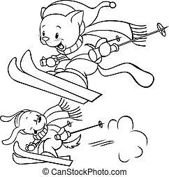 katz, hund, ski fahrend
