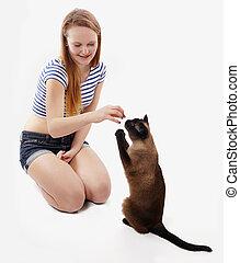 Katze bettelt um einen Leckerbissen.