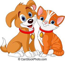 Katze und Hund