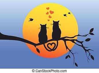 Katzen auf Baumzweig, Vektor.