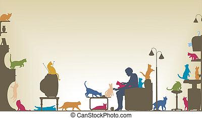 Katzenzimmer