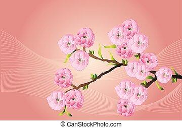 Kirschblüten, Astbaum.