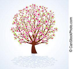 Kirschblütenbaum