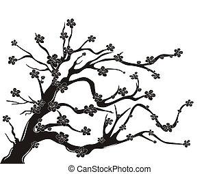 Kirschblütenbaumsilhouette.