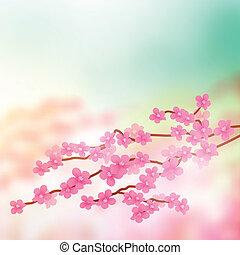 Kirschblütenbaumzweig.