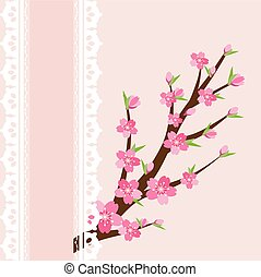 Kirschblütenzweig auf rosa Hintergrund.