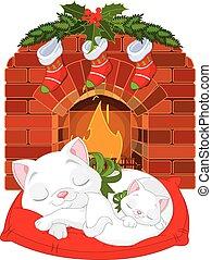 Kitten bei Kamin.