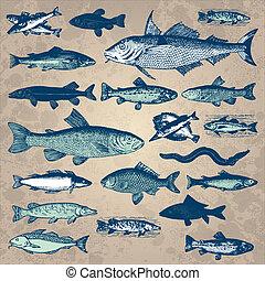 Klassischer Fischset (Vektor)