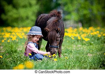 klein, feld, pferd, kind