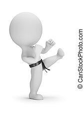 klein, karate, 3d, -, leute
