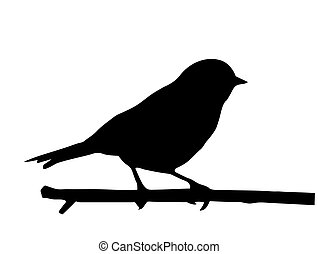 klein, vektor, silhouette, vogel, zweig