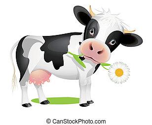Kleine Kuh isst Gänseblümchen
