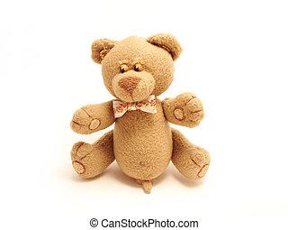 Kleiner männlicher Bär