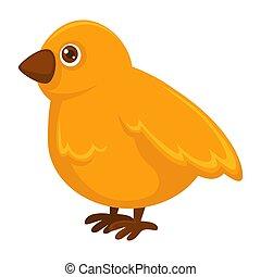 Kleines flauschiges, gelbes Hühnchen mit kleinen scharfen Schnabel