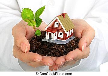 Kleines Haus und Pflanze in Händen.