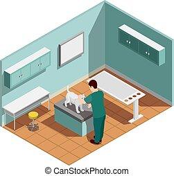 klinik, tierarzt, isometrisch, zusammensetzung