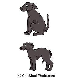 klub, doggie, karikatur, hundehütte, freigestellt, vektor, salon, hund, stammbaum, inländisch, training, haustier, sighthound, purebred, mascot., reizend, windhund, eckzahn, illustration., junger hund, breed., clipart.