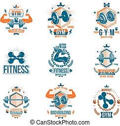 koerper, begeisternd, hanteln, geschaffen, silhouettes., workout, muskulös, ausrüstung, thema, vektor, gewichte, sammlung, fitness, hanteln, plakate, sport, scheibe, sportler, logotypes
