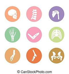 koerper, knochen, symbol, menschliche
