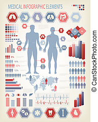 koerper, menschliche , elements., organs., medizin, intern, vector., infographics