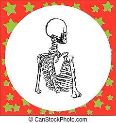 koerper, skelett, freigestellt, abbildung, hand, hintergrund., vektor, menschliche , hälfte, gezeichnet, weißes, zeichen