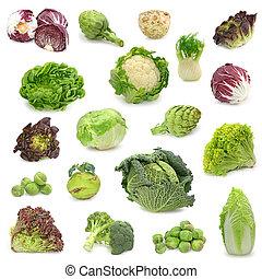 Kohl und grüne Gemüsesammlung