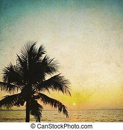 Kokospalmenbaum ilhouettet und Sonnenaufgang im klassischen Hintergrund